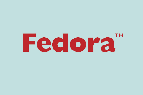 Core Attributes of Fedora Repository Enable Complex Modeling of Data and Objects For Re-use in a Wide Variety of Instances